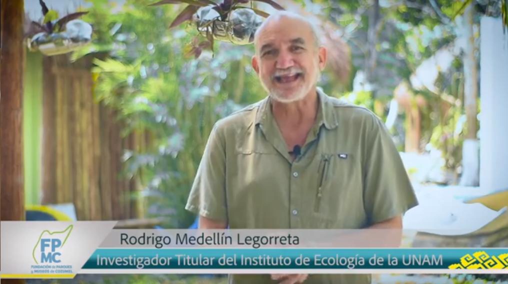 """El Dr. Rodrigo Medellín, conocido como el """"Hombre Murciélago"""""""