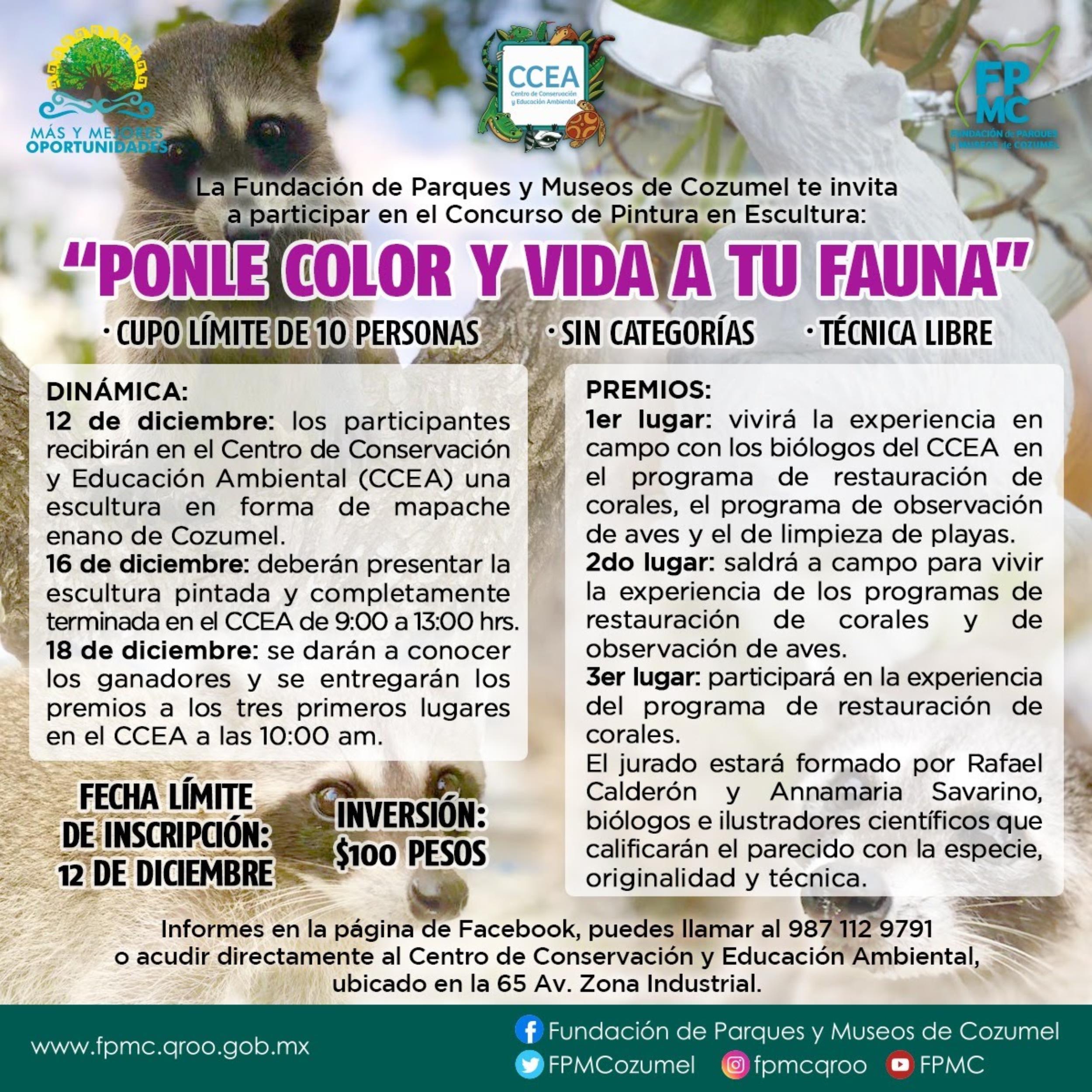 """LA FPMC INVITA AL PRIMER CONCURSO """"PONLE COLOR Y VIDA A TU FAUNA"""""""